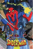 The Spectacular Spider-Man (2008) 1